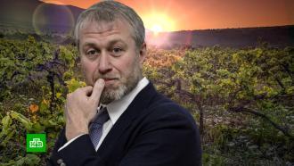 Абрамович может заняться гостиничным бизнесом вГеленджике