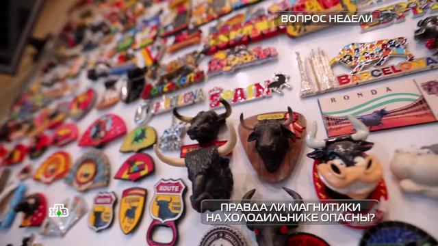 Опасныли для здоровья магнитики на холодильнике?НТВ.Ru: новости, видео, программы телеканала НТВ