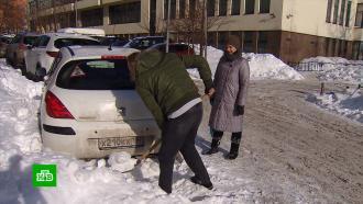Предприимчивые люди слопатами подзаработали во время рекордных снегопадов