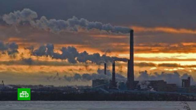 В России хотят ограничить выплату дивидендов для вредящих природе предприятий.экология, компании, промышленность, экономика и бизнес.НТВ.Ru: новости, видео, программы телеканала НТВ