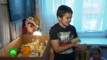 Школьник из многодетной семьи выводит цыплят в однокомнатной квартире.Калининградский школьник Алик Гордюков стал звездой соцсетей. Туда он отправился не за лайками и популярностью. Алик собирается стать успешным фермером. Первые шаги уже сделаны: мальчик освоил разведение цыплят и делится наблюдениями в блоге. Число подписчиков растет на глазах, но это не цель, а средство на пути к заветной мечте.Калининград, дети и подростки, сельское хозяйство, экономика и бизнес.НТВ.Ru: новости, видео, программы телеканала НТВ