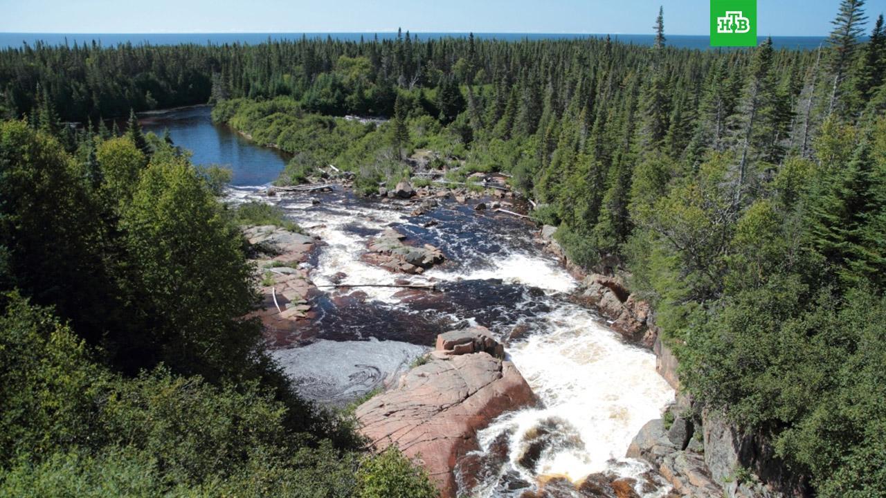 В Канаде реку впервые официально признали личностью // НТВ.Ru