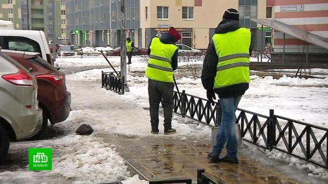 Чиновники проверяют уборку дворов по жалобам петербуржцев.ЖКХ, Санкт-Петербург, зима, снег.НТВ.Ru: новости, видео, программы телеканала НТВ