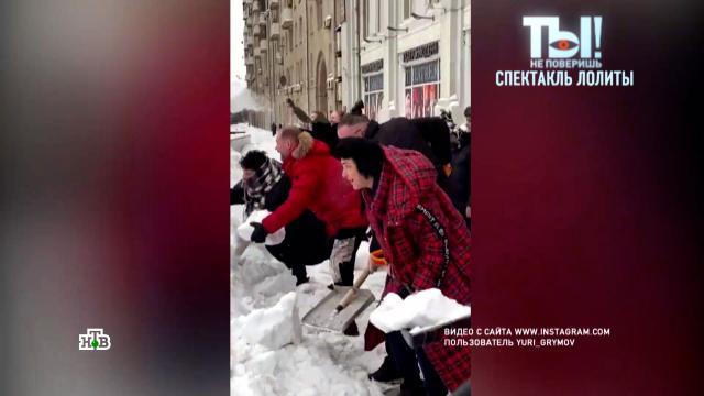 Лолита после снегопадов взялась за лопату.Милявская Лолита, знаменитости, театр, шоу-бизнес, снег, эксклюзив.НТВ.Ru: новости, видео, программы телеканала НТВ