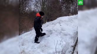 Сын Галкина иПугачевой остался один убирать снег на морозе