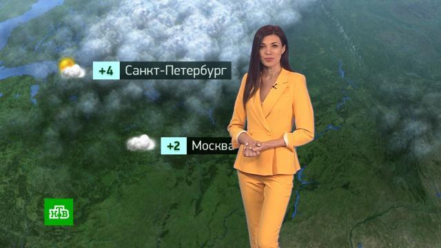 Утренний прогноз погоды на 1марта.погода, прогноз погоды.НТВ.Ru: новости, видео, программы телеканала НТВ