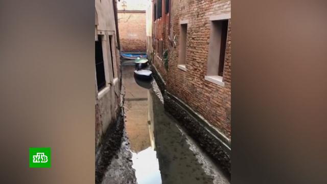 Туристы фотографируют пересохшие каналы Венеции.Венеция, Италия, погодные аномалии, туризм и путешествия.НТВ.Ru: новости, видео, программы телеканала НТВ