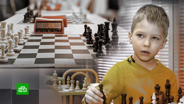 Пятилетний шахматный гений записал видеообращение к министру.Томск, дети и подростки, спорт, шахматы.НТВ.Ru: новости, видео, программы телеканала НТВ