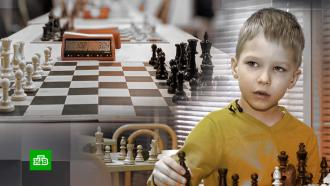 Пятилетний шахматный гений записал видеообращение к министру