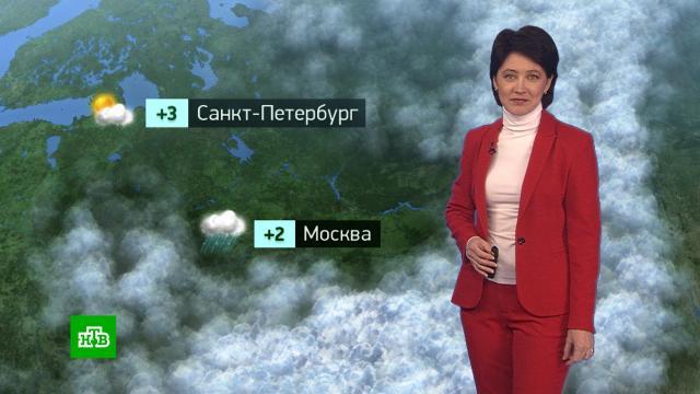 Утренний прогноз погоды на 2марта.погода, прогноз погоды.НТВ.Ru: новости, видео, программы телеканала НТВ