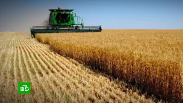 Названы крупнейшие землевладельцы вРоссии.рейтинги, сельское хозяйство.НТВ.Ru: новости, видео, программы телеканала НТВ