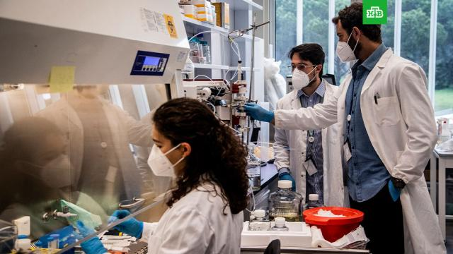 ВИталии нашли не поддающийся вакцинам штамм COVID-19.Италия, болезни, коронавирус, эпидемия.НТВ.Ru: новости, видео, программы телеканала НТВ