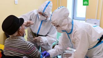 В России выявили 11 385 новых случаев COVID-19.За последние сутки в РФ зафиксировали 11 385 новых случаев заражения коронавирусной инфекцией (вчера было 10 535).болезни, коронавирус, социология и статистика, эпидемия.НТВ.Ru: новости, видео, программы телеканала НТВ