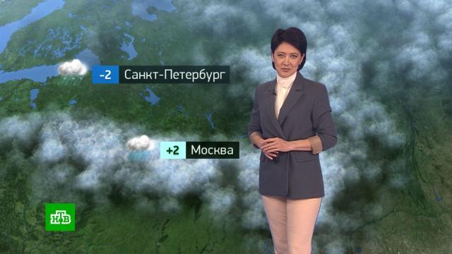 Утренний прогноз погоды на 4марта.погода, прогноз погоды.НТВ.Ru: новости, видео, программы телеканала НТВ