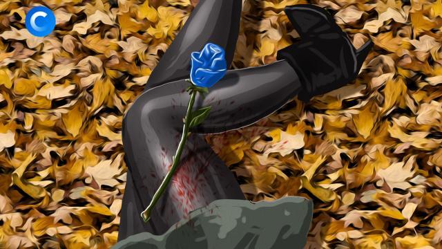 Синяя роза— эмблема убийства.НТВ.Ru: новости, видео, программы телеканала НТВ