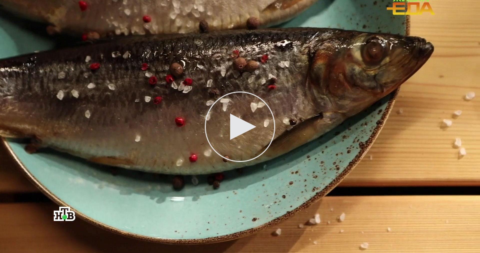 Рыбка из бочки: вчем польза селедки