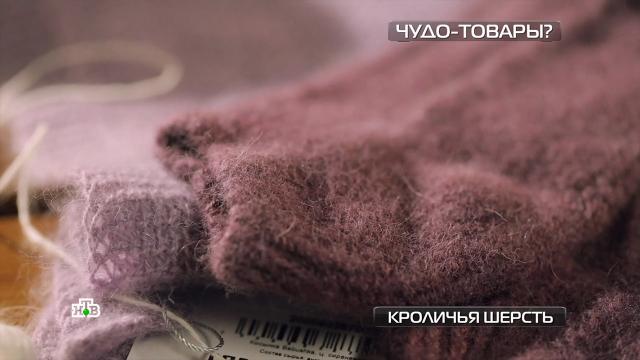 Правда ли, что кроличья шерсть теплее овечьей.одежда.НТВ.Ru: новости, видео, программы телеканала НТВ