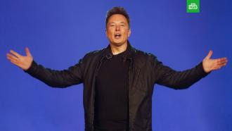 Илон Маск объявил себя «технокоролем» Tesla