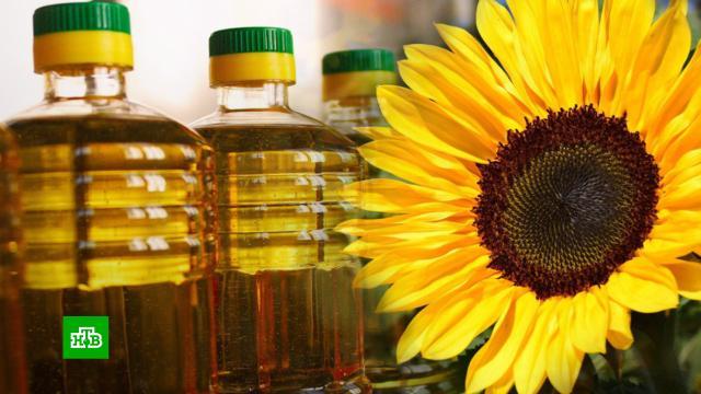 В России хотят ввести экспортную пошлину на подсолнечное масло.еда, налоги и пошлины, продукты, торговля, экономика и бизнес.НТВ.Ru: новости, видео, программы телеканала НТВ