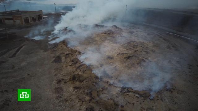 Дым от горящих отходов маслозавода отравил жизнь в саратовских поселках.Саратовская область, заводы и фабрики, пожары.НТВ.Ru: новости, видео, программы телеканала НТВ