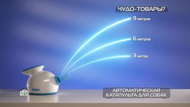 Портативная сушилка, «неубиваемый» смартфон инательный обогреватель.НТВ.Ru: новости, видео, программы телеканала НТВ