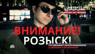 Как дерзкий аферист Демон обворовывал миллионеров.НТВ.Ru: новости, видео, программы телеканала НТВ