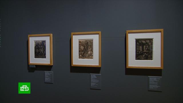 ВИсторическом музее открывается выставка гравюр Дюрера.Москва, выставки и музеи, живопись и художники.НТВ.Ru: новости, видео, программы телеканала НТВ