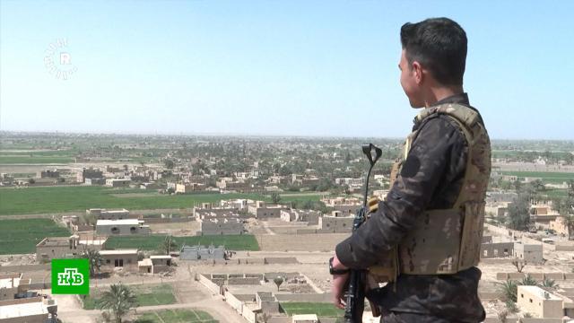 МИД РФ: Запад мешает подконтрольным Дамаску районам получать гуманитарную помощь.ООН, Сирия, войны и вооруженные конфликты, гуманитарная помощь, дипломатия.НТВ.Ru: новости, видео, программы телеканала НТВ