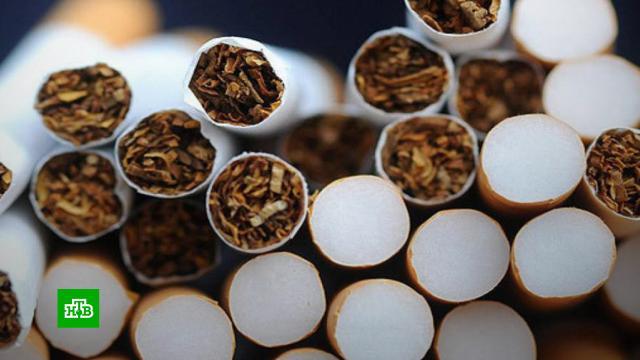 В России установили единую минимальную цену на сигареты.магазины, табак, тарифы и цены, торговля, экономика и бизнес.НТВ.Ru: новости, видео, программы телеканала НТВ