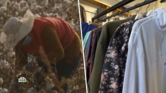 Хлопковая война: глобальное противостояние Запада иВостока взвинчивает цены на одежду.НТВ.Ru: новости, видео, программы телеканала НТВ