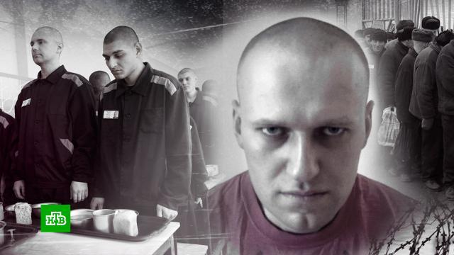 Сокамерники рассказали оповедении Навального вколонии.Владимирская область, Навальный, тюрьмы и колонии.НТВ.Ru: новости, видео, программы телеканала НТВ