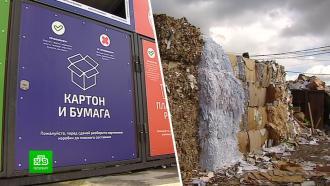 Молочный концерн учит Петербург иЛенобласть правильно разделять мусор