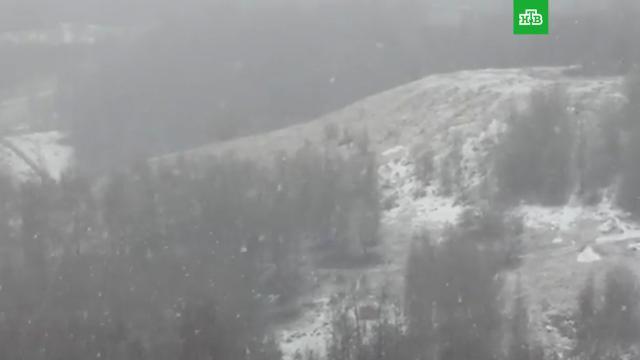 Апрельский снегопад накрыл Москву.Москва, погода, снег.НТВ.Ru: новости, видео, программы телеканала НТВ