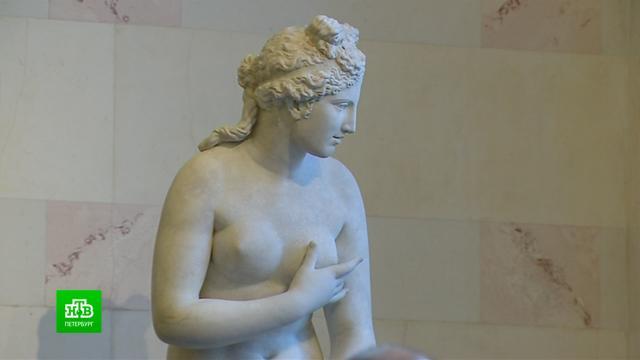 Эрмитаж получил официальную жалобу на обнаженные скульптуры.Эрмитаж, выставки и музеи, искусство.НТВ.Ru: новости, видео, программы телеканала НТВ