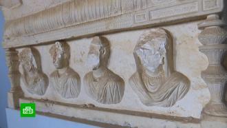 Сын казненного боевиками ученого восстанавливает уцелевшие вПальмире артефакты