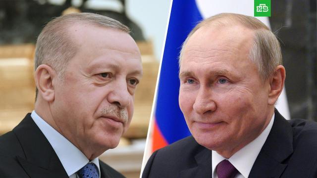 Путин провел телефонные переговоры сЭрдоганом.Турция, Украина, Эрдоган, коронавирус, переговоры, туризм и путешествия, эпидемия.НТВ.Ru: новости, видео, программы телеканала НТВ