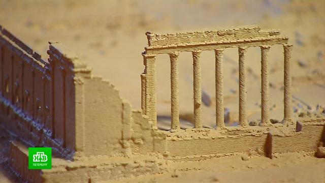 Петербург передает сирийским археологам современную технику для изучения Пальмиры.Санкт-Петербург, Сирия, археология, история.НТВ.Ru: новости, видео, программы телеканала НТВ