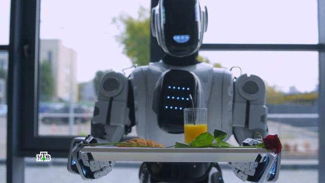 Сервис будущего: роботехника на службе уресторанов.НТВ.Ru: новости, видео, программы телеканала НТВ