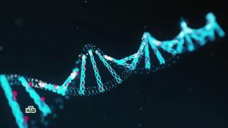 Чем может обернуться мода на тесты ДНК.НТВ.Ru: новости, видео, программы телеканала НТВ