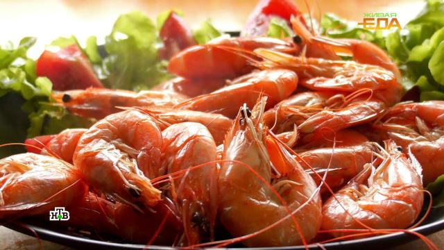 Морские гады: необычные иполезные блюда скреветками.НТВ.Ru: новости, видео, программы телеканала НТВ