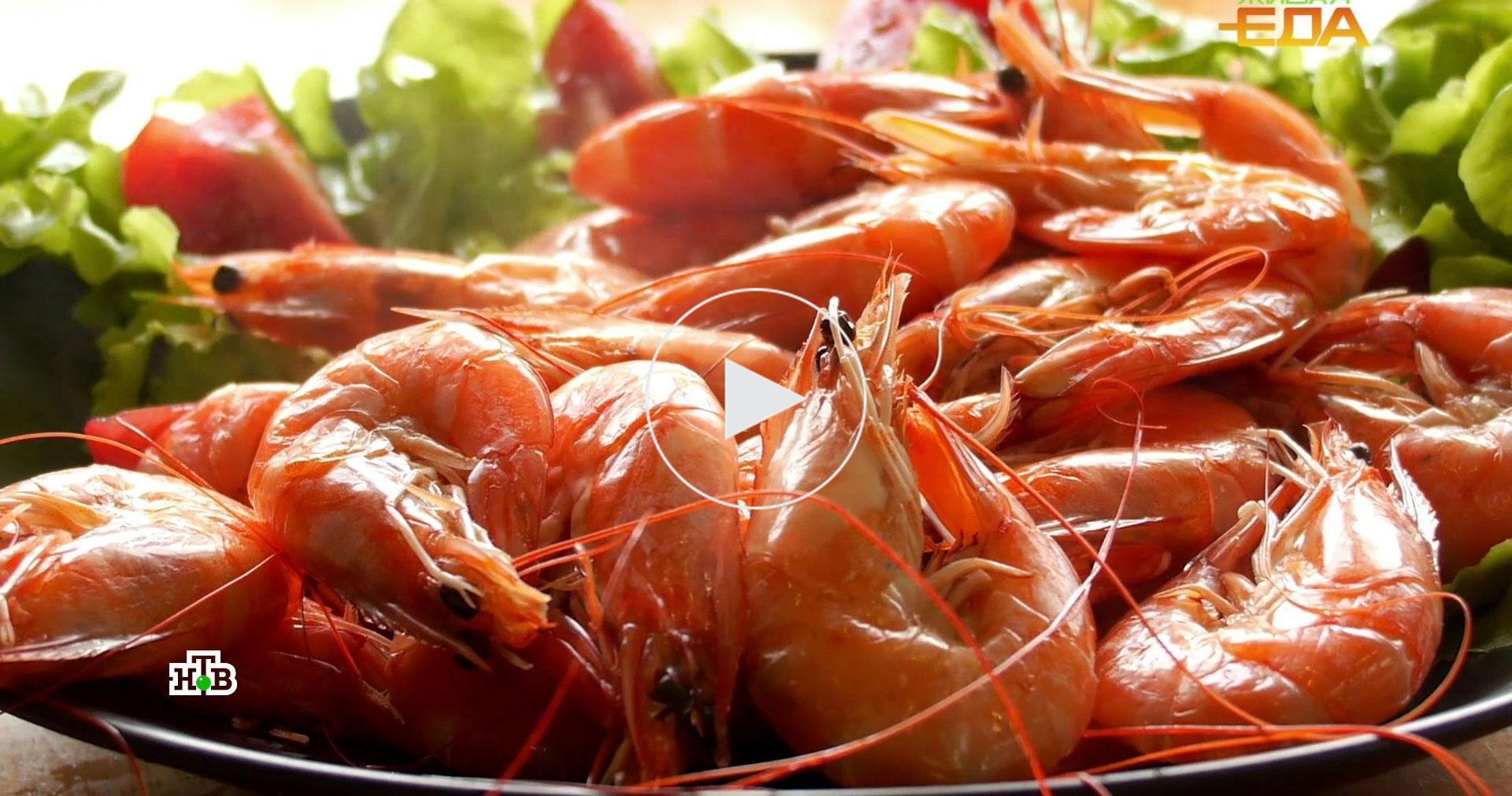 Морские гады: необычные иполезные блюда скреветками