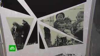 Кубанская Хатынь: рассекречены страшные детали дела огеноциде вгоды ВОВ
