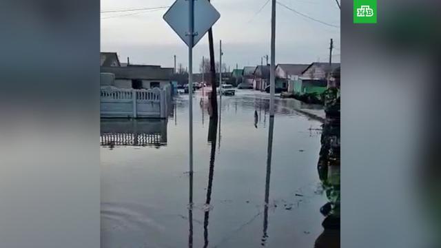 Жители Башкирии ловят рыбу на затопленных улицах.Башкирия.НТВ.Ru: новости, видео, программы телеканала НТВ