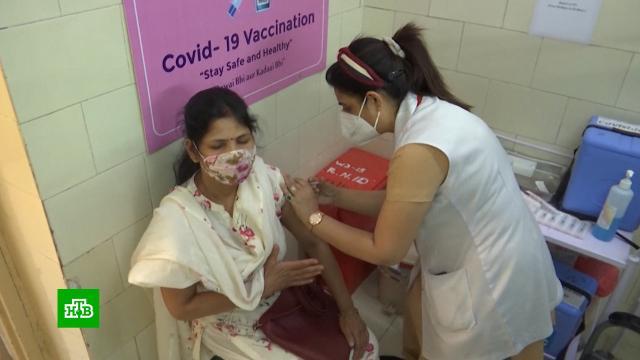 Индия одобрила российскую вакцину «Спутник V».Индия, болезни, вакцинация, прививки, эпидемия, коронавирус.НТВ.Ru: новости, видео, программы телеканала НТВ