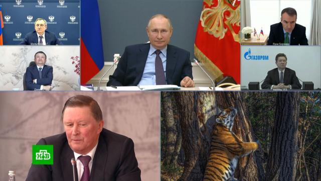 Очем говорили на заседании совета РГО спрезидентом.Арктика, Путин, география и топонимика.НТВ.Ru: новости, видео, программы телеканала НТВ