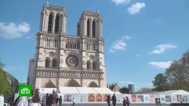 Собор Парижской Богоматери откроется в 2024 году.Париж, Франция, пожары.НТВ.Ru: новости, видео, программы телеканала НТВ