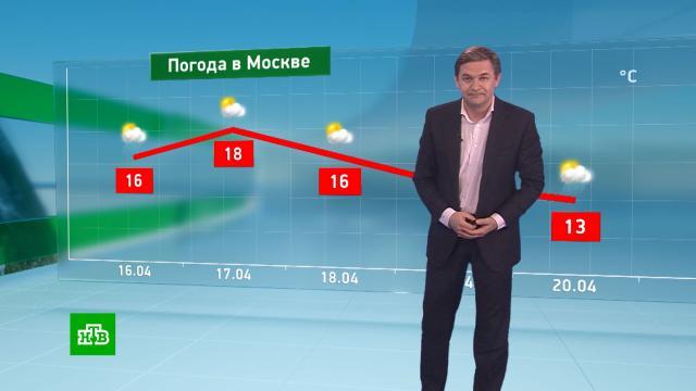 Утренний прогноз погоды на 16апреля.погода, прогноз погоды.НТВ.Ru: новости, видео, программы телеканала НТВ