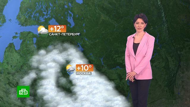 Прогноз погоды на 20 апреля.погода, прогноз погоды.НТВ.Ru: новости, видео, программы телеканала НТВ