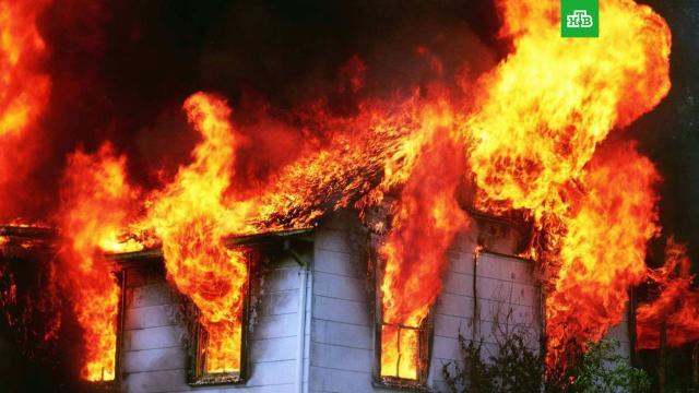 Варварская традиция: чем опасны поджоги травы.ЗаМинуту, лес, пожары.НТВ.Ru: новости, видео, программы телеканала НТВ
