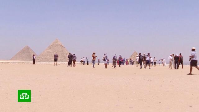 Туроператоры оценили новости оскором запуске чартеров вЕгипет.Египет, МИД РФ, отдых и досуг, туризм и путешествия.НТВ.Ru: новости, видео, программы телеканала НТВ